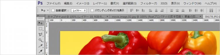 Photoshop 初心者 基本画面と基本操作(CS5)