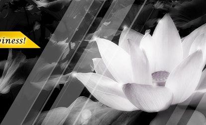 【白と黒のモノクロの世界】 facebookヘッダー画像
