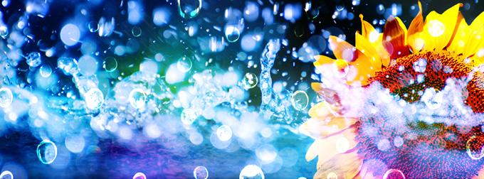 【艶やかな水滴をイメージ】 facebookヘッダー画像