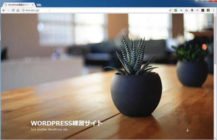 WordPress オリジナルテーマ 作り方講座 マンツーマンレッスン 管理画面提供